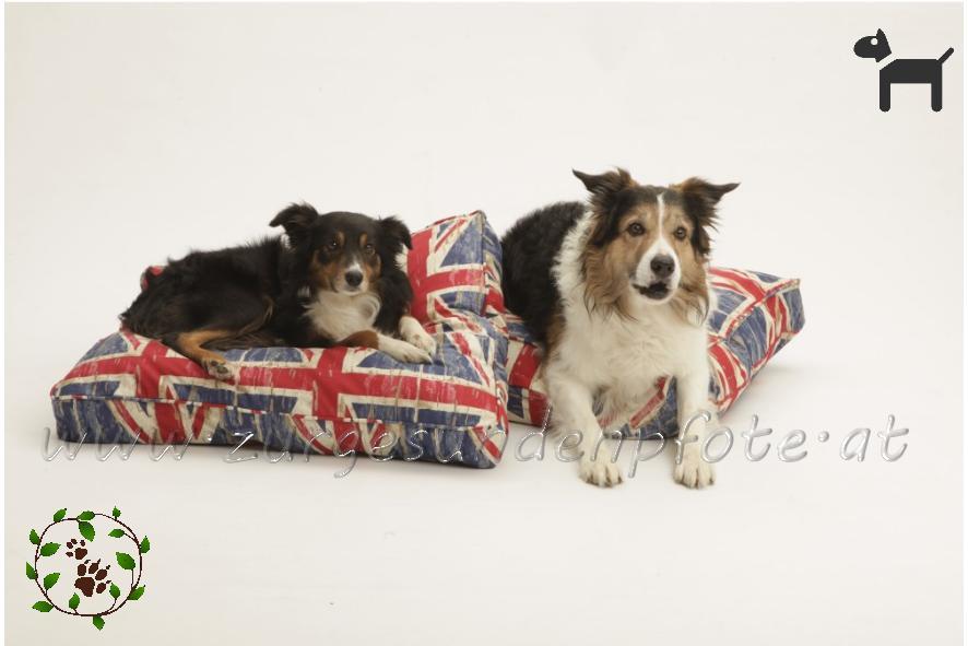 Union Jack - Hundekissen